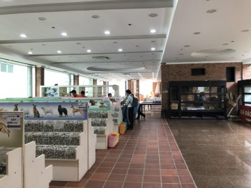 Cải tạo và sửa chữa kho SHOWROOM Minh SÁNG
